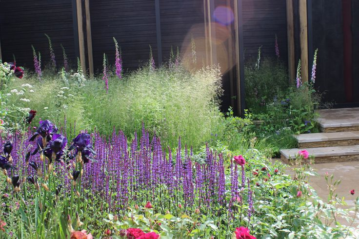 The Cloudy Bay Sensory Garden, Chelsea 2014, by Andrew Wilson & Gavin McWilliam. Photo by Carolyn Willitts, CW Studio, who helped to plant the show garden.