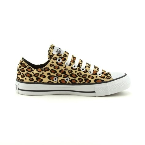 Leopard Converse I own these shoes <3
