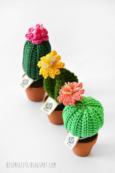 Cactus et autres plantes en tissus