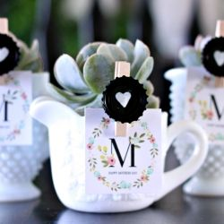 Milk glass found at Goodwill and some succulent plants make for a sweet Mother's Day Gift.  Tutorial on how to make heart clips too!