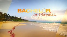 Bachelor in Paradise : Season 2 Premiere: The Mystery Woman Arrives | Season 2 premier Episode 1 Watch Full Episode - ABC.com