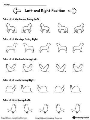 Help your child to learn Left and Right positions with this animals facing Left and Right worksheet.