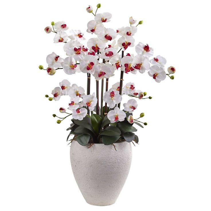SILK ORCHIDS PHALAENOPSIS ORCHID WITH WHITE  PLANTER SILK FLOWERS #NearlyNatural