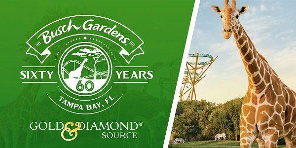 b6873d9ca473ab3a71de60d6b8611f36 - Busch Gardens Monthly Instant Rewards 2019