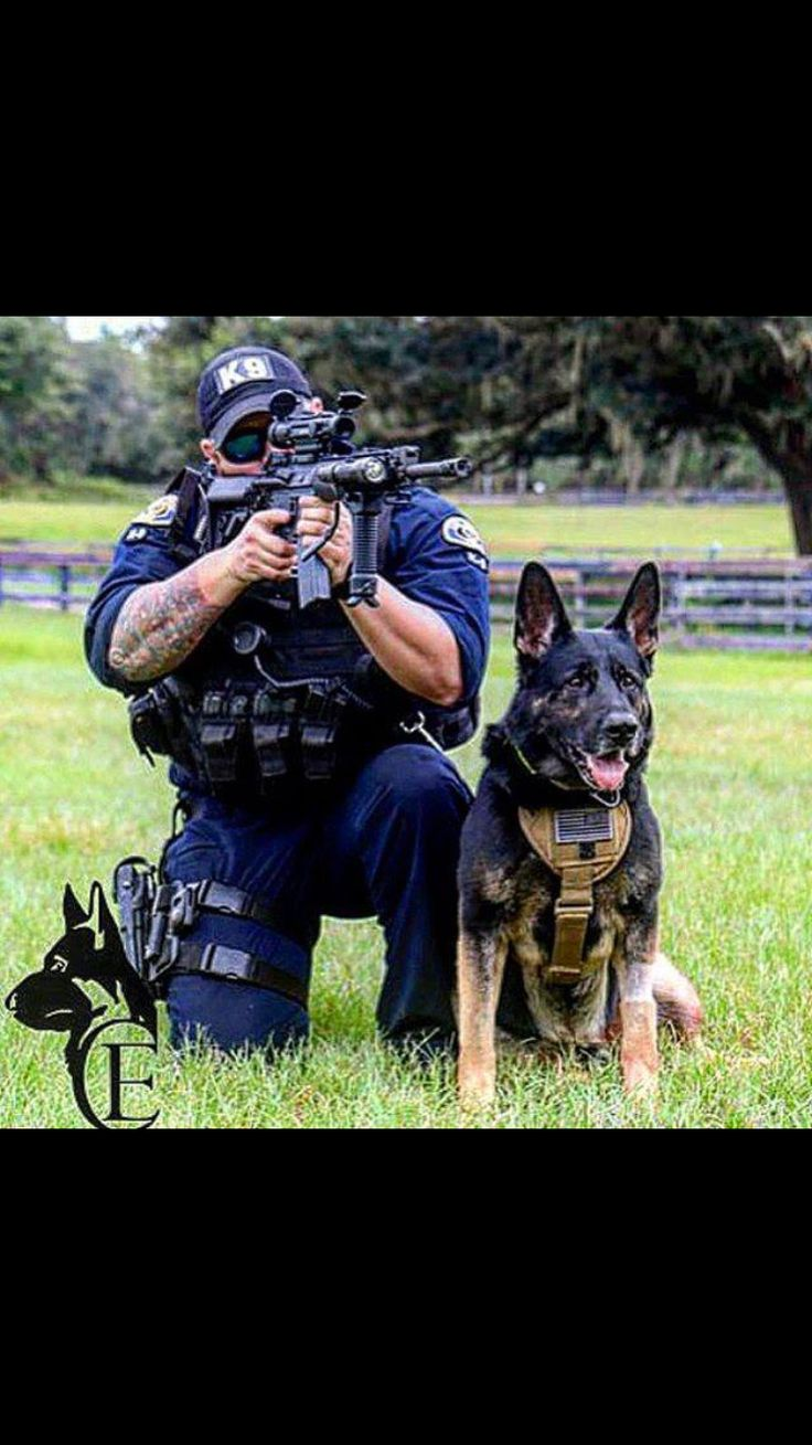 """K-9 Hope you're doing well.From your friends at phoenix dog in home dog training""""k9katelynn"""" see more about Scottsdale dog training at k9katelynn.com! Pinterest with over 20,200 followers! Google plus with over 143,000 views! You tube with over 500 videos and 60,000 views!! LinkedIn over 9,200 associates! Proudly Serving the valley for 11 plus years!"""