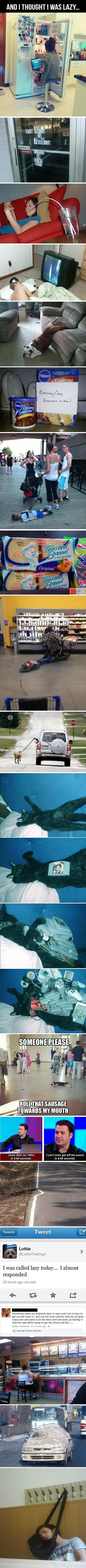 And I Tought I Was Lazy,  Click the link to view today's funniest pictures!