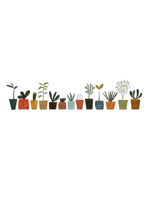 house plants drawing. i love these adorable potted plants house drawing