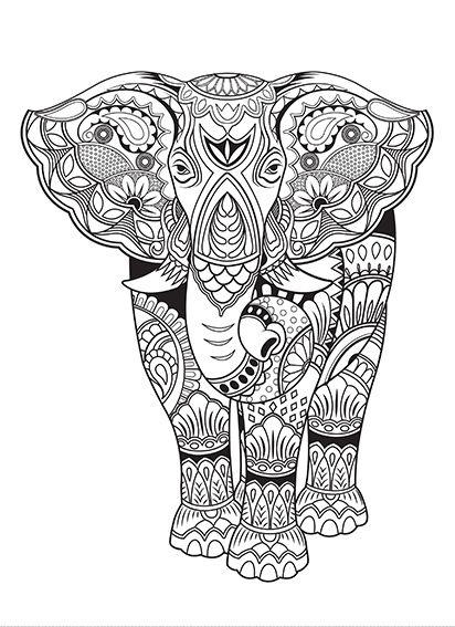Kaisercolour Poster Elephant