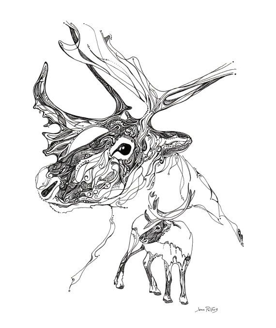 Line Drawings Of Woodland Animals : Best coloring images on pinterest books