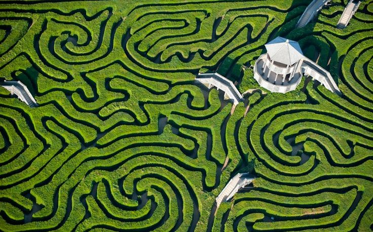 Longleat's Maze is nearly two miles of paths and the largest in Britain. From the air it looks like a puzzle book. Picture: Jason Hawkes