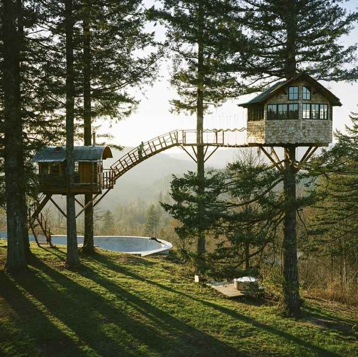 maison en bois dans les arbres et idée d'aire de jeux pour enfant
