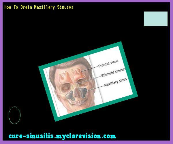 How To Drain Maxillary Sinuses 184711 - Cure Sinusitis