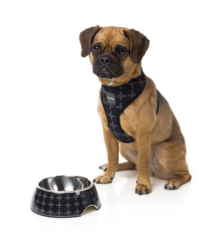 FuzzYard Yeezy Easy Feeder Pet Bowl