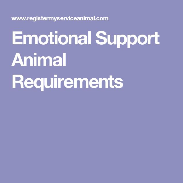 Emotional Support Animal Requirements