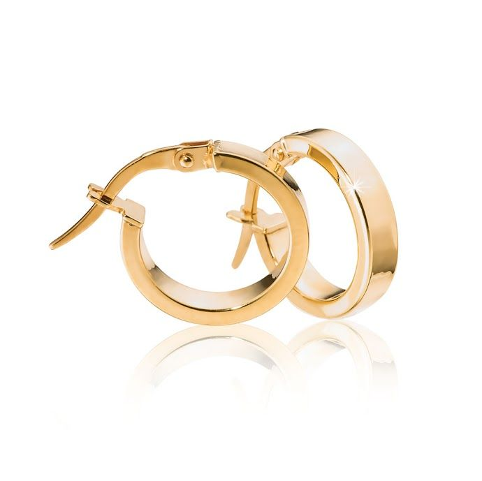 9ct Gold Earrings R780  *Prices Valid Until 25 Dec 2013