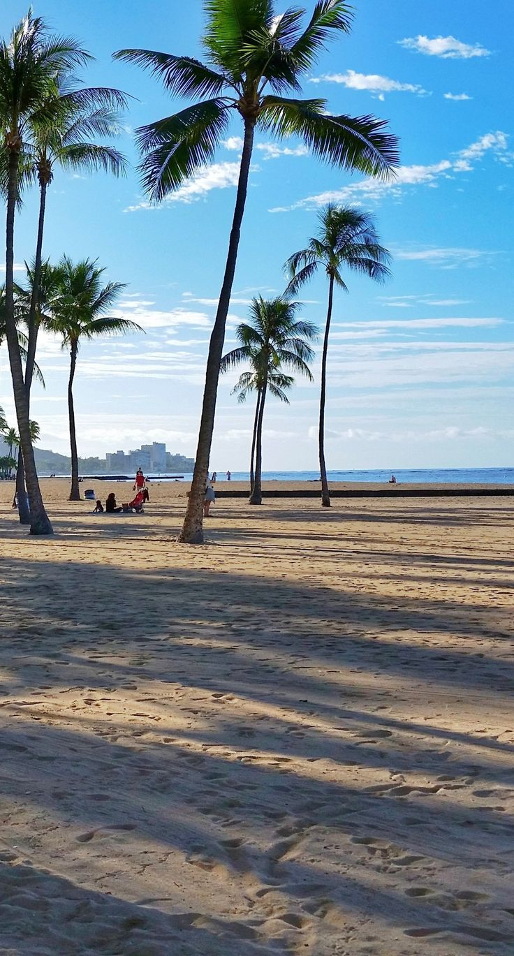 Beach at Hilton Hawaiian Village hotel and