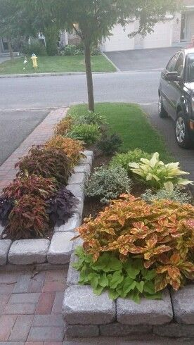 Best 25 Townhouse Landscaping Ideas On Pinterest Yard Landscaping Solar Walkway Lights And Patio