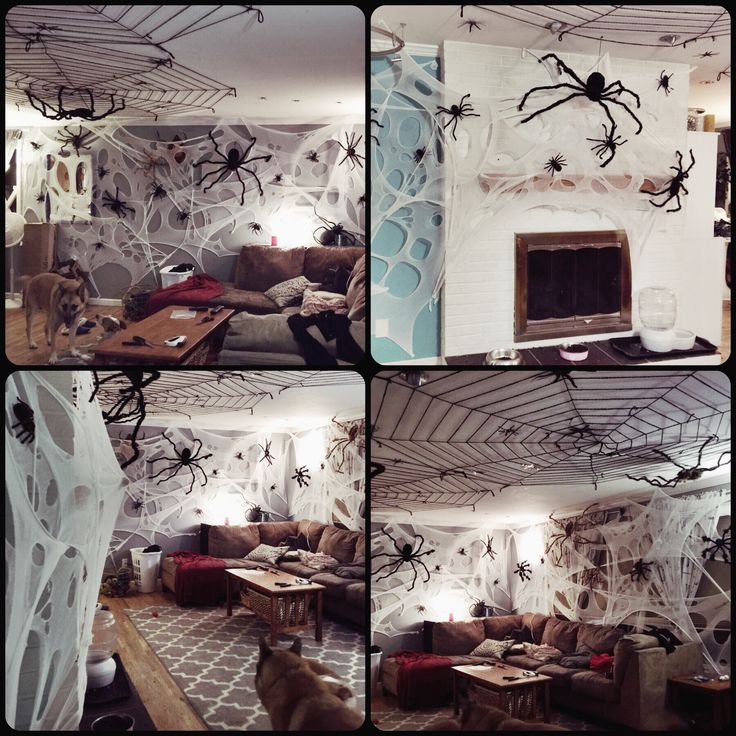 Decorating Ideas > 217 Best Images About Halloween Spiders On Pinterest  ~ 111615_Halloween Decorating Ideas At Work