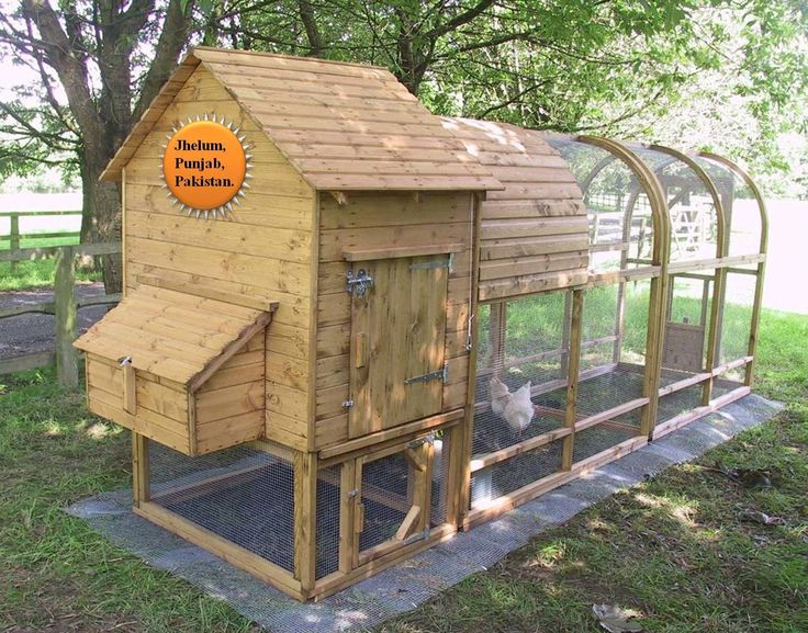 Big Birds or Chickens Coops (House)                                                                                                        ...
