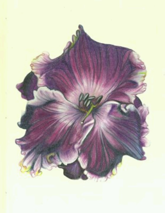 This is the next tattoo I want. It would be for my mom who passed away in 1992. She loved African violets.