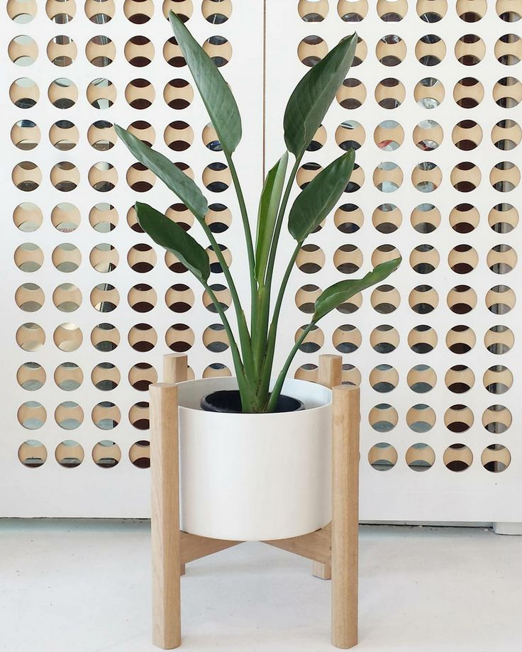 Plants are an easy way to transform an empty corner or space in your home. Here are 10 of the best planters to buy online in Australia right now.