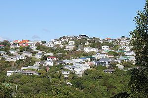 Wadestown looking from Ngaio