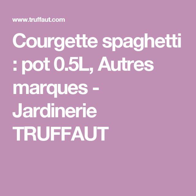 Courgette spaghetti : pot 0.5L, Autres marques - Jardinerie TRUFFAUT