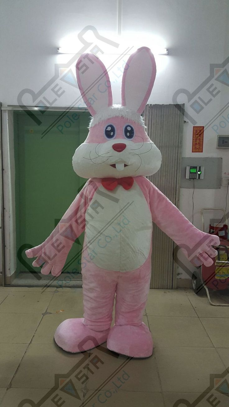 Best 25+ Pink bunny costume ideas on Pinterest | Call shirley ...