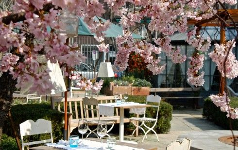 Restaurant Al Fresco in Milan | Beautiful place to have a drink and delicious food in a lovely greenery in- and outdoor setting!