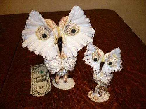 17 best images about owl sea shells art schelpen uil on for Animals made out of seashells