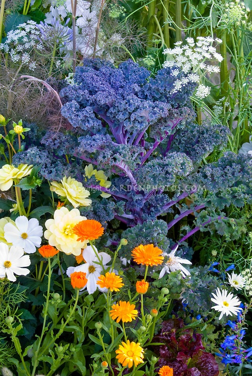 17 best images about gardening edible landscaping on pinterest kale landscaping and asian Flowers to plant in vegetable garden