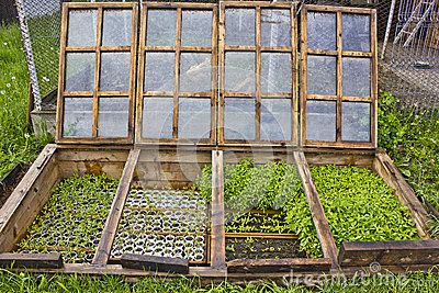 Underground Green House - Download From Over 32 Million High Quality Stock Photos, Images, Vectors. Sign up for FREE today. Image: 54647465