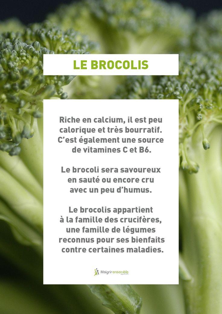 Fruit et Légumes - Le Brocolis // Bienfaits Alimentation saine et équilibrée