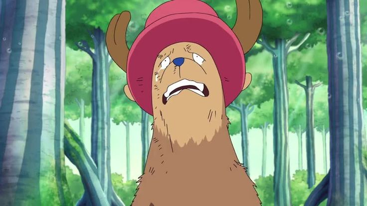 Watch One Piece Episode 404 English Dubbed Online for Free in High Quality. Streaming One Piece Episode 404 English Dubbed in HD.