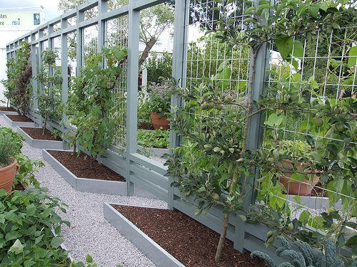 RHS Growing Tastes Kitchen Garden