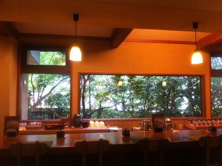 木の見えるカフェ