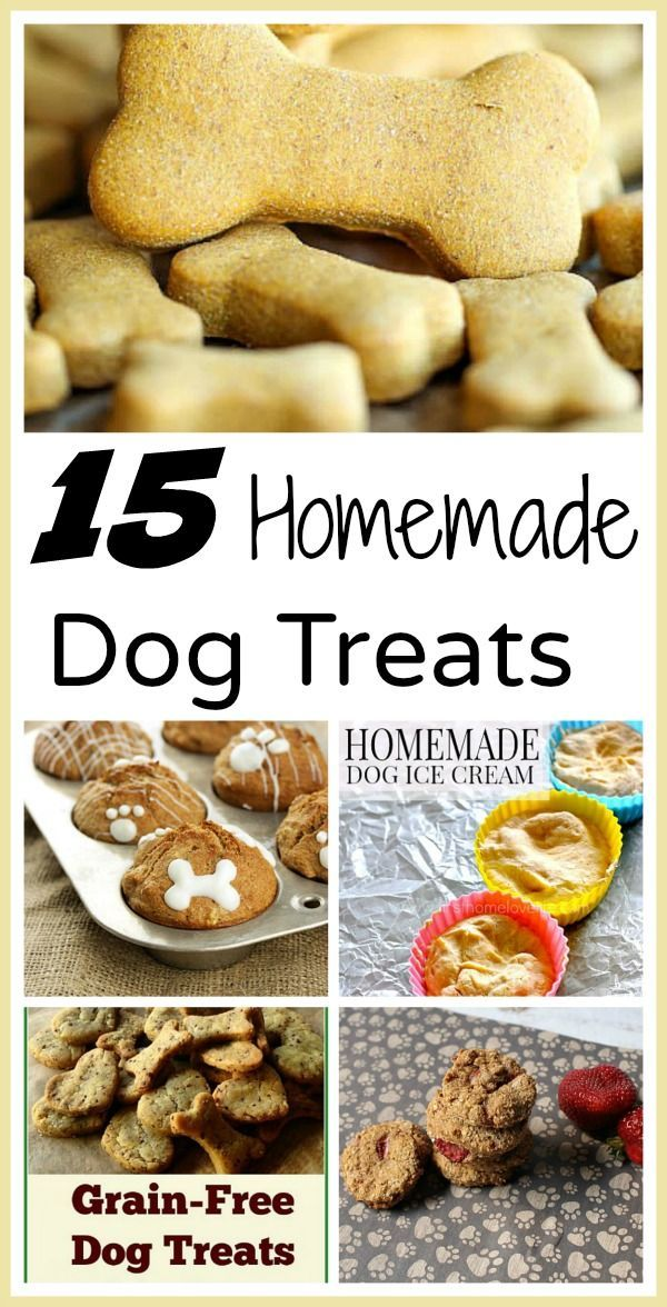 Making your own homemade dog treats doesn't take long, saves you money, and gives you peace of mind since you know what's in them (no recall worries)! Check out these 15 easy homemade dog treats you can make for your furry friend!