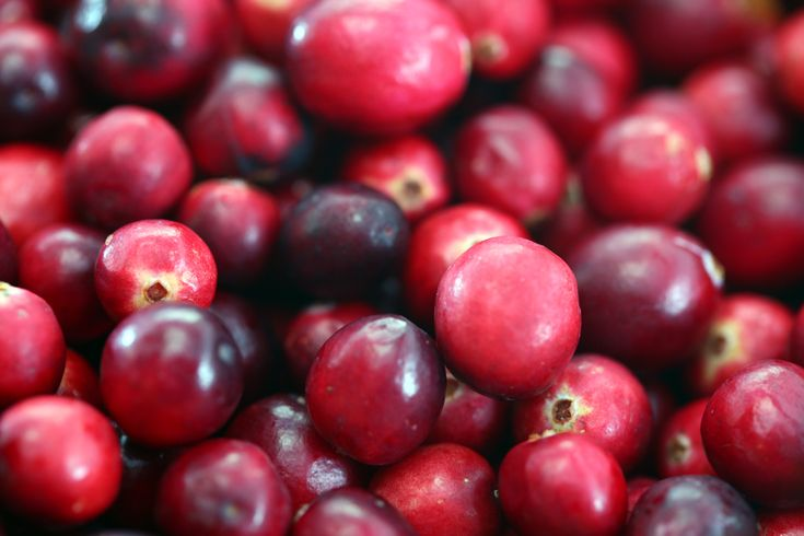 It's cranberry season, people! Whether you like eating cranberries or not, you have to admit that they have quite a fetching hue.    It's just the greatest shade for the holiday season. Not only can you eat many delicious foods made with cranberr