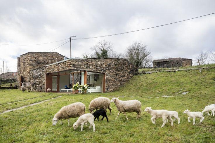 Şarap üretiminin, kültürün ve yerel ekonominin önemli parçalarından biri olduğu Ribeira Sacra bölgesinin özgün mimari dokusu, yeşil ile dengelenen taş yapılardan oluşuyor. Evlere eklemlenen eski şarap imalathaneleri, kilerler ve hayvanlarının tutulduğu barınaklar da bu dokuyu zenginleşiyor. Atıl durumda kalmış bu yapılardan biri de Cubus, Taller d'Arquitectura tarafından gerçekleştirilen proje ile yeni bir yaşam alanına dönüşüyor. Proje şekillendirilirken yapının aslına ve köyün dokusuna…
