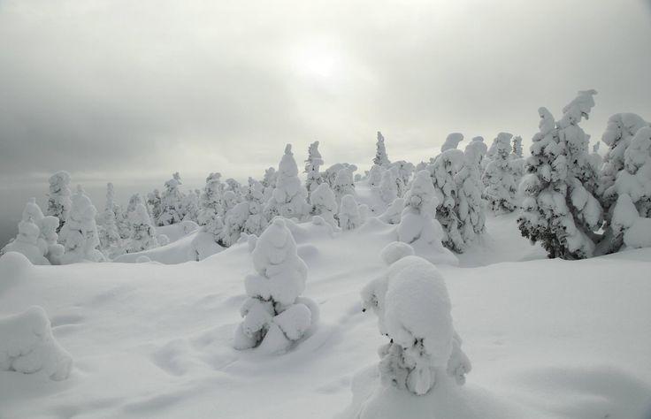 Vallée des fantômes, Monts Valin