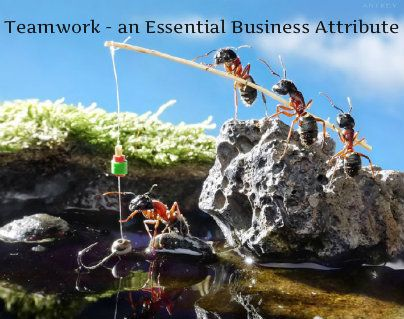 5 Effective Team Building Activities for Your Customer Service Team
