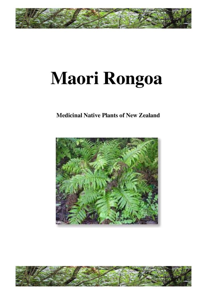 Medicinal Native Plants of New Zealand