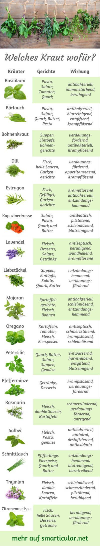 So viele Gartenkräuter, aber du weißt nicht wohin damit? Dann lass dich von unserem kleinen Kräuter-ABC inspirieren, damit du immer weißt, welche Kräuter am besten zu deinem Essen passen!