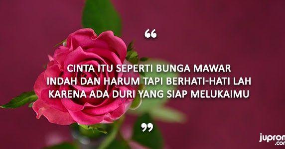 13 Gambar Tangan Memegang Setangkai Bunga Mawar 50 Kata Kata Mutiara Caption Tentang Bunga Juproni Quotes Mawar Tertu Di 2020 Romantis Kata Kata Mutiara Surat Cinta