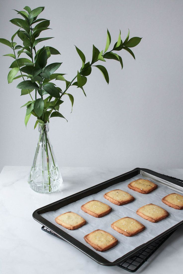 Rosemary Olive Oil Shortbread Cookies || Savoury biscuit recipe made with only 6 ingredients. Simple and delicious! || www.creamandhoney.ca