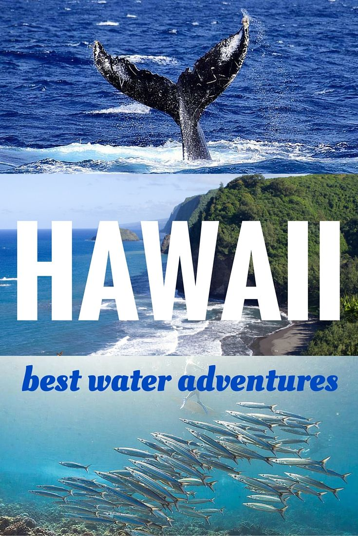 Get wet! And indulge in Hawaii's best water adventures! Read here ~  http://www.sandinmysuitcase.com/best-hawaii-water-adventures/
