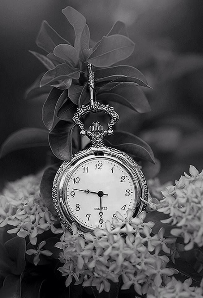 clock in the flowers