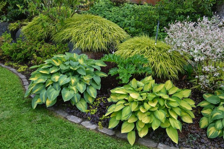 Garden ideas 23 awesome pictures small north facing garden for Garden design ideas north facing