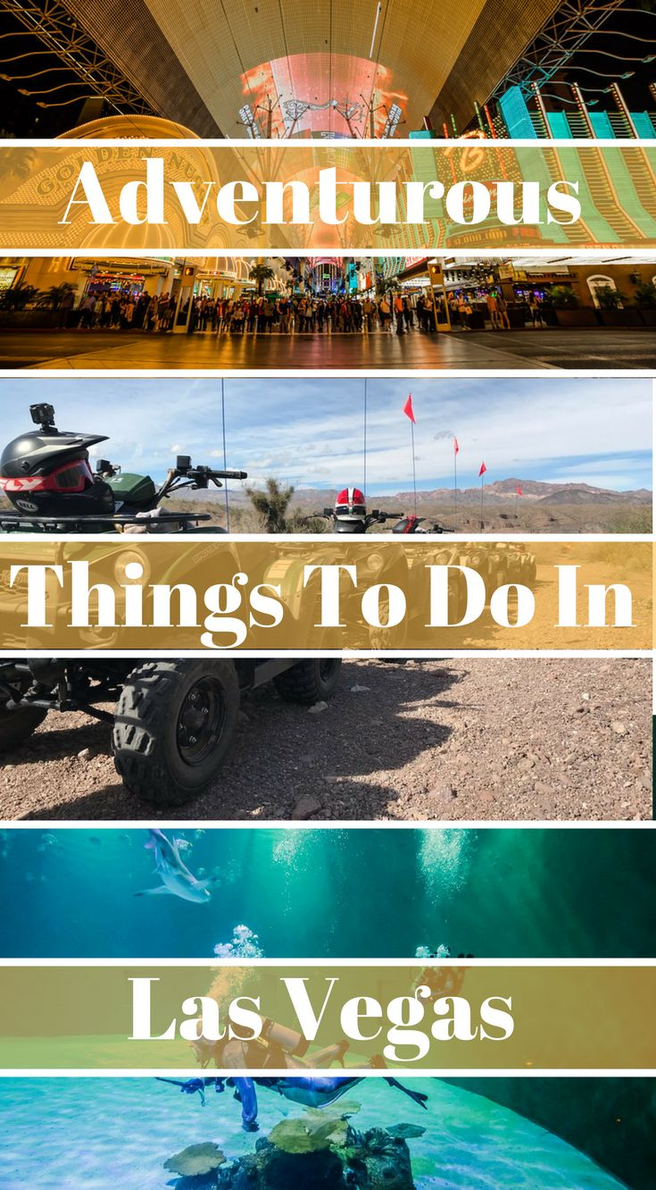 Adventurous Things to do in Las Vegas. This list was put together by our adventures we did on our latest visit to Las Vegas. The adventures are.... Go Hiking in Red Rock Canyon..... Scuba Dive with Sharks... Zip Lining in Bootleg Canyon... ATV in the Mojave Desert... ATV in the Mojave Desert.... Aerobatic Flight with Sky Combat Ace (A world's top 100 travel adventure.) And so much more! Click to read Adventurous Things to do in Las Vegas #Travel #Thingstodo #LasVegas #Vegas #Adventure