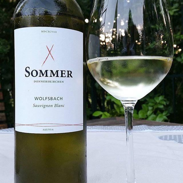 Weingut Leo Sommer Österreich Sauvignon blanc Wolfsbach #sauvignonblanc #wein #österreich #weisswein #weissweintrocken #weingutsommer #wolfsbach #burgenland